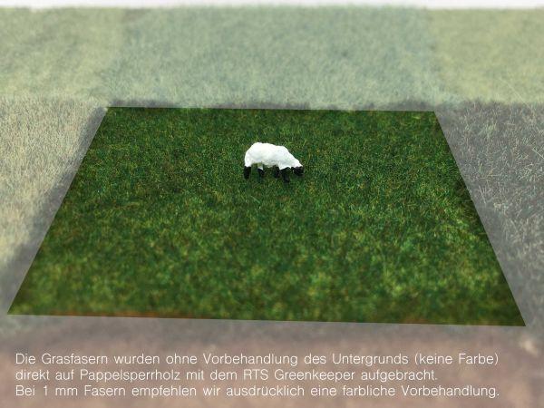 KaModel - s7/1,0 Statisches Gras - Fichte - 1mm Länge (20g)